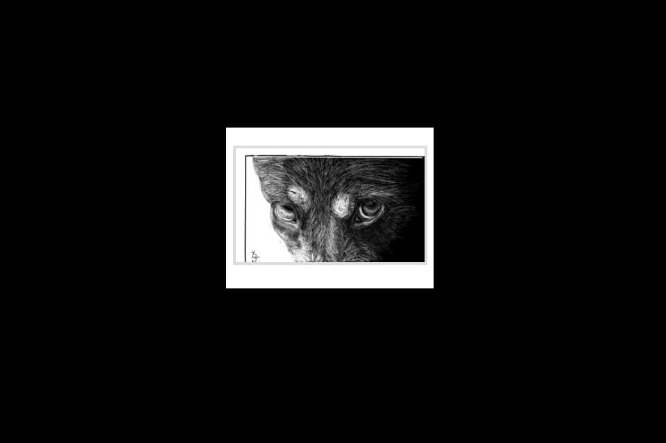 Интересный сайт для рисования Sketchtoy создан не только для приятного творческого процесса, но и может быть полезен, чтобы создать трафарет или эскиз в онлайн режиме. Функции этого веб-приложения доступны без регистрации, они просты и минимальны, но достаточны для получения желаемого результата: Возможность перетащить с рабочего стола на холст свое изображение для создания трафарета. Выбор размера и цвета кистей, чтобы нарисовать эскиз. Отмена последнего действия. Работа ластиком. Необычная функция добавления вибрации нарисованной картинки. Поворот рисунка стрелками на компе. Автоматическая запись всего процесса рисования. Дорисуйте картинку другого автора, поделитесь в соц. сетях или скачайте результат на компьютер.